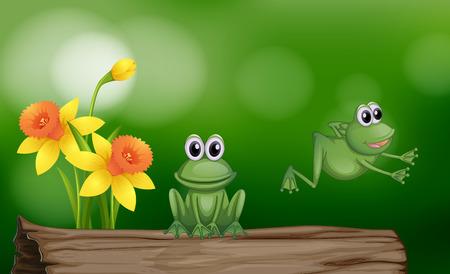 Due rane verdi sull'illustrazione del log