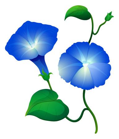 푸른 색 그림에 나팔꽃 꽃