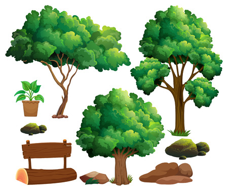 pot leaf: Different types of trees and garden elements illustration