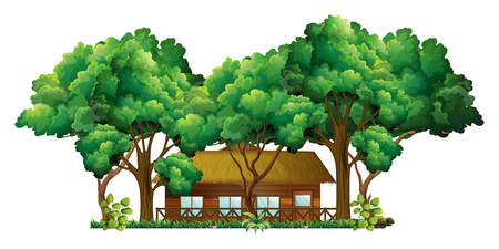 forest wood: Wood cabin in the forest illustration Illustration