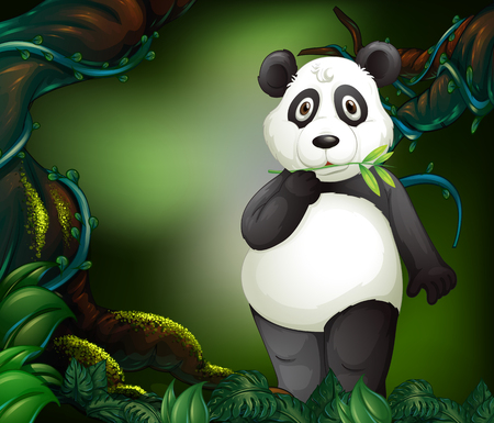 jungle vines: Panda standing in deep forest illustration