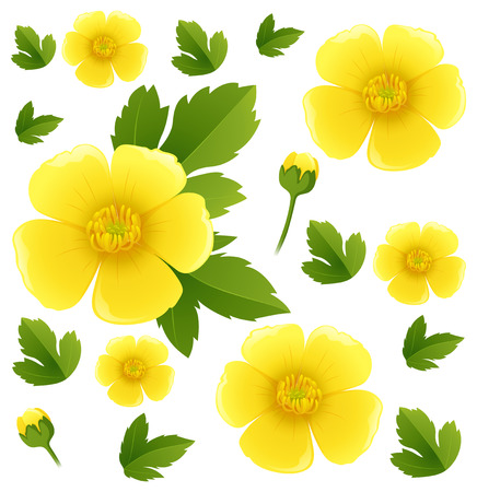 Seamless background with yellow buttercup flowers illustration Vettoriali