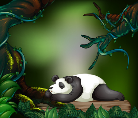 jungle vines: Panda sleeping in the dark forest illustration