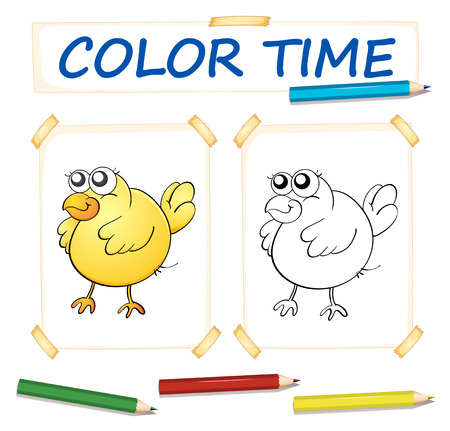 colour pencils: Coloring paper template with yellow chick illustration