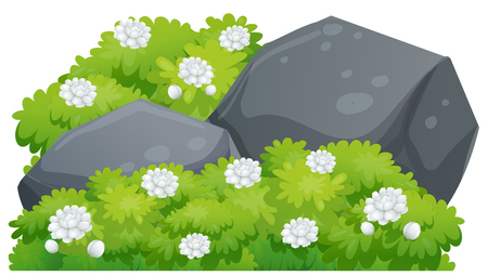 buisson: Jasmine flowers on green bush illustration Illustration