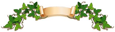 Banner ontwerp wtih groene klimop vine illustratie