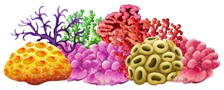 異なる色のサンゴ礁の図