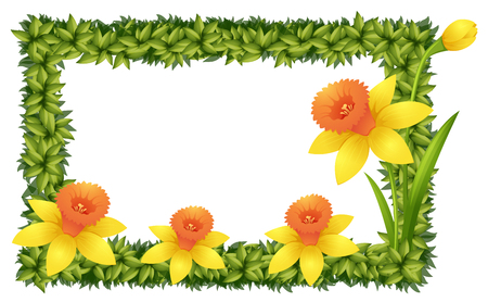 Frame sjabloon met narcis bloemen illustratie