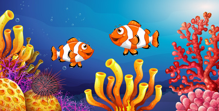 clownfish: Underwater scene with clownfish and sea urchin illustration Illustration
