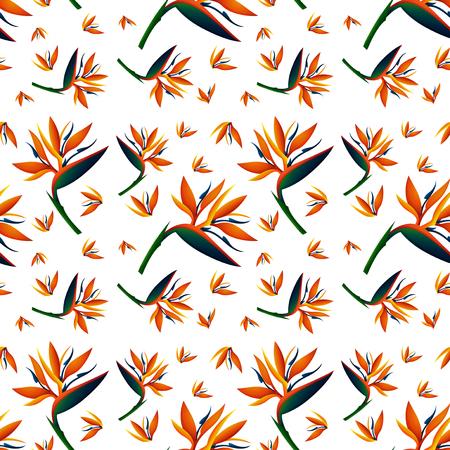 bird of paradise: Seamless background design with bird of paradise flowers illustration