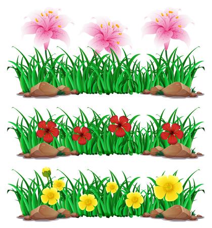 Flowers in green bush illustration Illustration