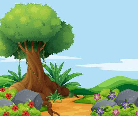 campo de flores: Escena de la naturaleza con el árbol grande a lo largo de la pista de la ilustración
