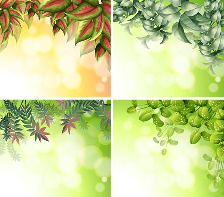 tropical plants: Background design with nature theme illustration Illustration
