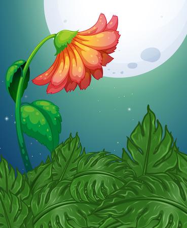 night art: Red flower on full moon night illustration