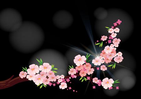 Fleurs de cerisiers sur l'illustration de la branche