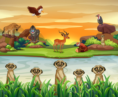 Wild animals by the river illustration Illustration