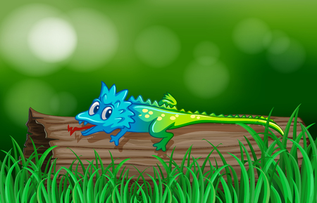 fields  grass: Colorful lizard on wooden log illustration