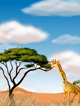 fields  grass: Giraffe running in the field illustration Illustration