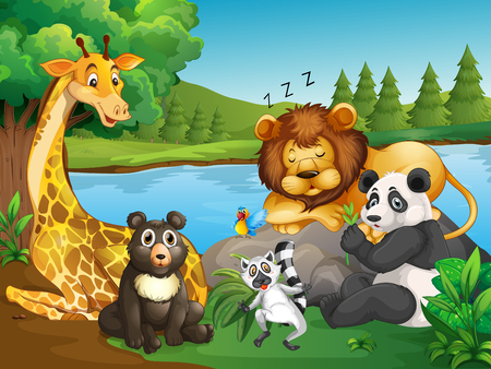 Many types of wild animals by the lake illustration Illustration