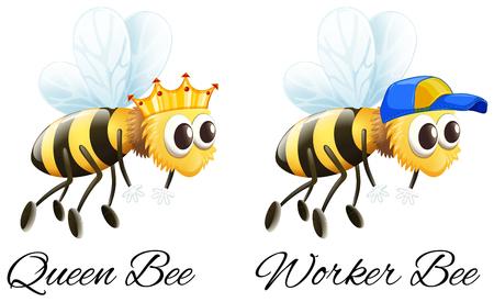 Königin Biene und Arbeiter Biene Zeichen Illustration