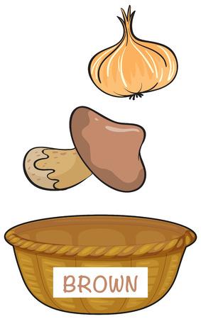 colour image: Basket for brown vegetables illustration Illustration