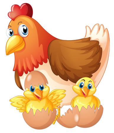 Mother hen and two chicks in eggs illustration Illustration