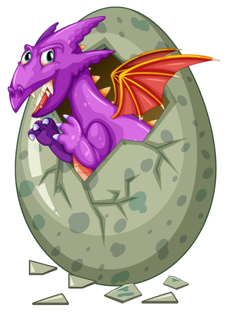 fantacy: Dragon comes out of egg illustration