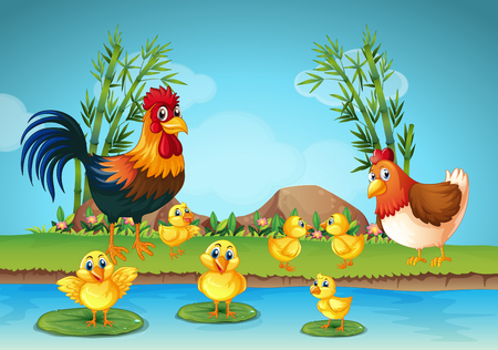 water stream: Rooster and chicks by the river illustration Illustration