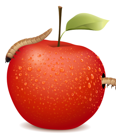 wet leaf: Red apple with two worms illustration