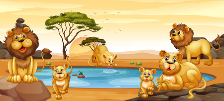 lioness: Lions living by the pond illustration