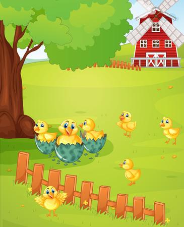 Little chicks on the farmyard illustration