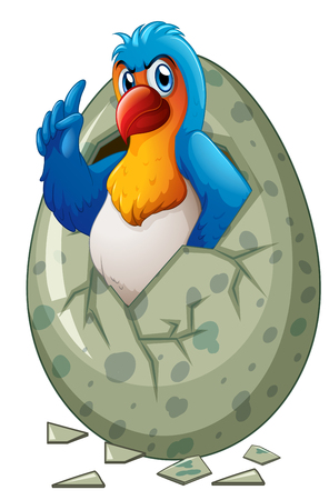 lovebird: Baby macaw hatching egg illustration
