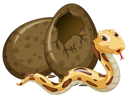 brown egg: Brown snake hatching egg illustration