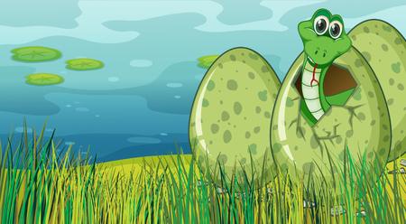 Green snake hatching egg by the pond illustration