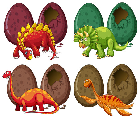 Four types of dinosaurs and eggs illustration