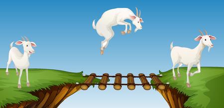 Drie geiten kruising brug illustratie Vector Illustratie