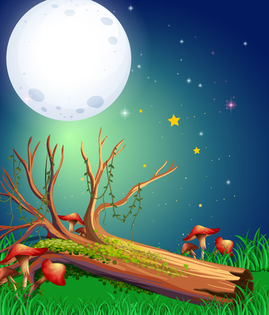 Scene with fullmoon over the garden illustration