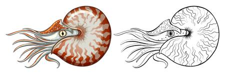 Animal outline for nautilus shell illustration Ilustração