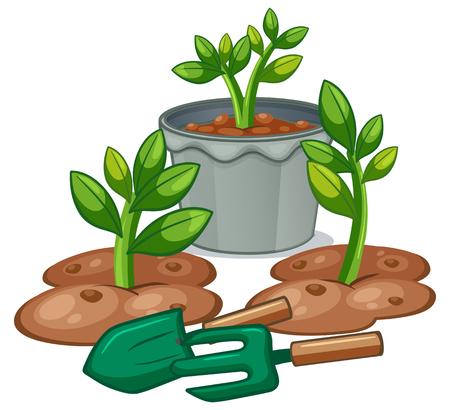 Ilustración de plantas y equipos de jardinería