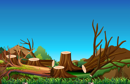 Field scene with chopped woods illustration
