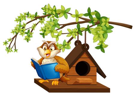 Owl reading book by the birdhouse illustration Illustration