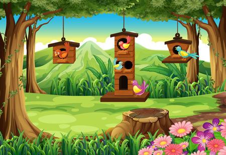 Park scene with birds in birdhouse  illustration.