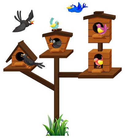 Different types of birds in birdcage illustration.