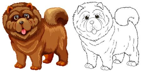 dog: Animal outline for fluffy dog illustration. Illustration