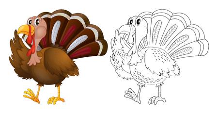 Animal outline for wild turkey illustration.
