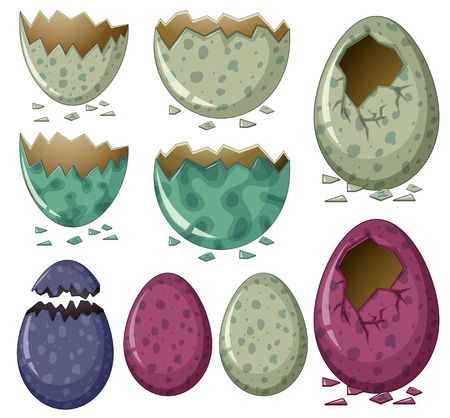 Different patterns of dinosaur eggs illustration.