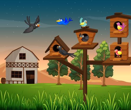 Many birds in birdhouse on the farm illustration.