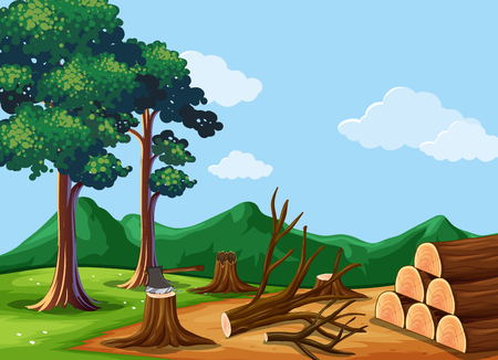Forest scene with chopped woods illustration