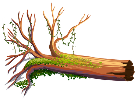 Wood with green vine illustration