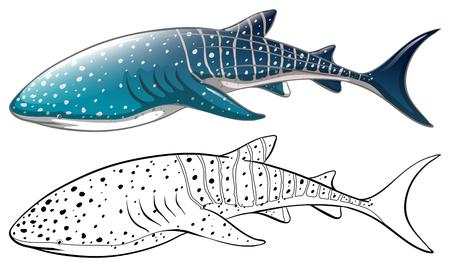 シャチのイラストの落書き動物の概要